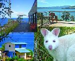 Bruny Island Accommodation Services